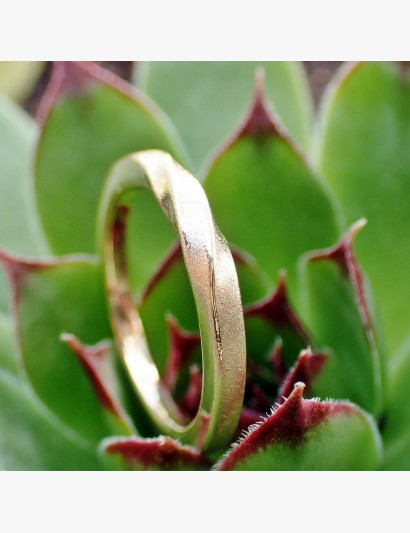 goldener Möbiusring im Quadrat